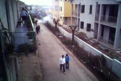 FestaBellona2005_001